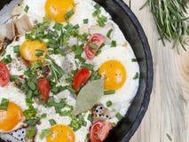 Fried eggs on the simple Stock Photos