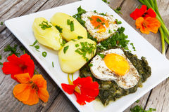 Fried eggs and spinach Stock Photography