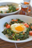 Fried eggs with spinach Royalty Free Stock Photos