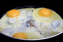 Fried eggs. Three eggs are fried on a frying pan stock photography
