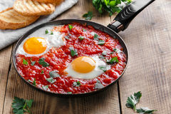 Fried eggs in tomato sauce Stock Image
