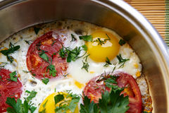 Fried Eggs With Tomatoes Stockfotos