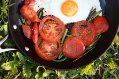 Fried eggs with tomatoes Royalty Free Stock Images