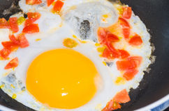 Fried eggs with tomatoes Royalty Free Stock Image