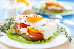 Fried Eggs With Peppers And Tomatoes On A White Plate Royalty Free Stock Photos