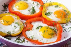 Fried eggs in yellow and red peppers macro. Horizontal royalty free stock image