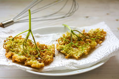 Fried elderflowesr in pancake batter on a  paper towel, traditio Royalty Free Stock Photography