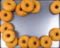 Fried equal round doughnuts in frame Stock Photography