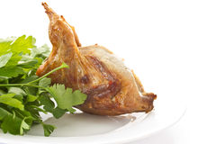 Fried female quail Stock Images