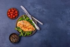 Fried fillet chicken with greenery. Top view with copy space Stock Photo
