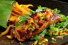 Fried fillet of red fish salmon with roasted vegetables, Royalty Free Stock Image