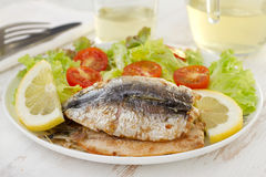 Fried fillet of sardines with salad and wine Royalty Free Stock Photo