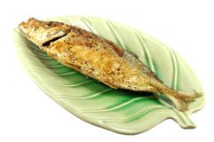 Fried Fish Stock Image