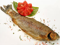 Fried fish. With herbs and spices against white Royalty Free Stock Photo