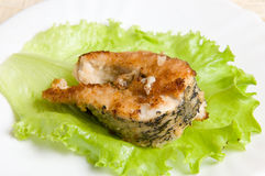 Free Fried Fish Stock Images - 19529464