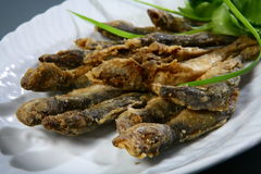 Fried fish Royalty Free Stock Photos