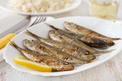 Fried fish with boiled rice Royalty Free Stock Images