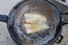 Fried fish on boiling oil Royalty Free Stock Image