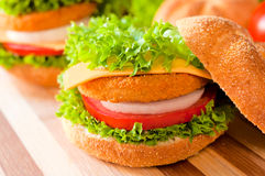 Fried fish burger Royalty Free Stock Photo