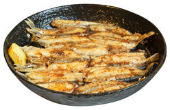 Fried fish capelin on black frying pan isolated Stock Images
