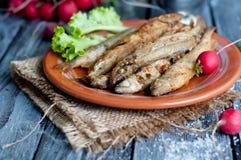 Fried fish capelin Royalty Free Stock Photo