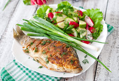 Fried fish carp. And fresh vegetable salad Royalty Free Stock Images