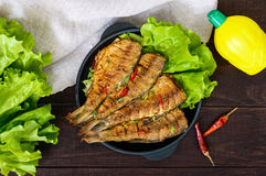 Fried fish carp sazan on a cast-iron frying pan with lettuce leaves Stock Photo