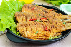 Fried fish carp sazan on a cast-iron frying pan with lettuce leaves Royalty Free Stock Image