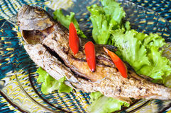 Fried fish with chili Stock Photography