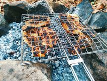 Fried fish on the coals Royalty Free Stock Photo