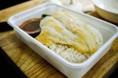 Fried Fish in contenitore di riso Immagini Stock