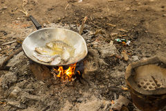 Fried fish cooking in camp. Fried fish cooking on pan using fire in camp Royalty Free Stock Images