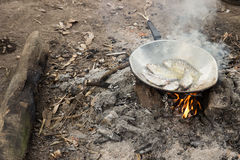Fried fish cooking in camp Royalty Free Stock Images