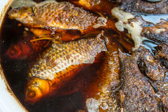 Fried  fish on cooking Royalty Free Stock Photography