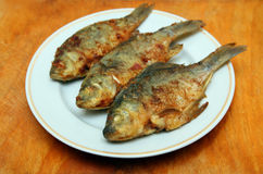 Fried fish crucian Stock Photo