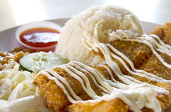 Fried Fish Cutlet Set Meal Image stock