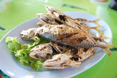 Fried fish. Delicious food in thailand, especially from samutsakorn Stock Photo