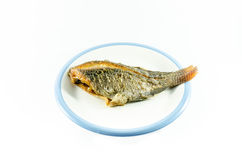 Fried fish in dish on white background Royalty Free Stock Photography