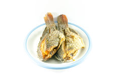 Fried fish in dish on white background Stock Image