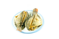 Fried fish in dish on white background Royalty Free Stock Photo
