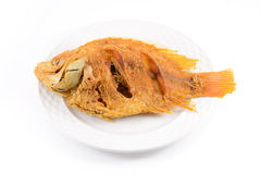Fried fish. On dish isolated on white background stock photography