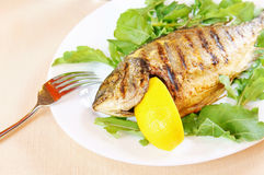 Fried fish Dorada with lemon Stock Image