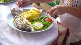 Fried fish dorada on plate with potatoes and vegetables stock video footage