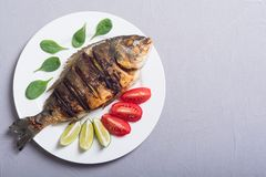 Fried fish dorado with lime , tomatoes and spinach . Sea food. Background stock image
