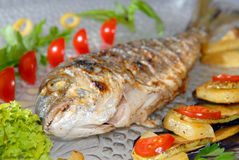 Fried fish dorado with vegetables royalty free stock image