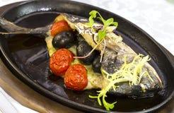 Fried fish dorado Stock Images