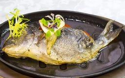 Fried fish dorado Stock Photos