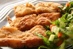 Fried fish filet in dish with salad