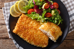 Fried fish fillet in breading and fresh vegetable salad close-up Stock Photography