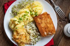 Fried fish fillet of cod. Stock Photography